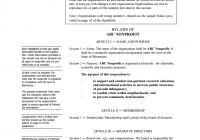 Non Profit Bylaws Template
